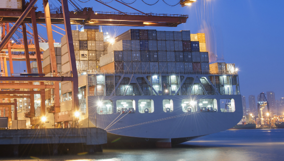 Container Shipping Company Reports