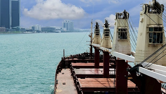 China Dry Bulk Terminal Market Study