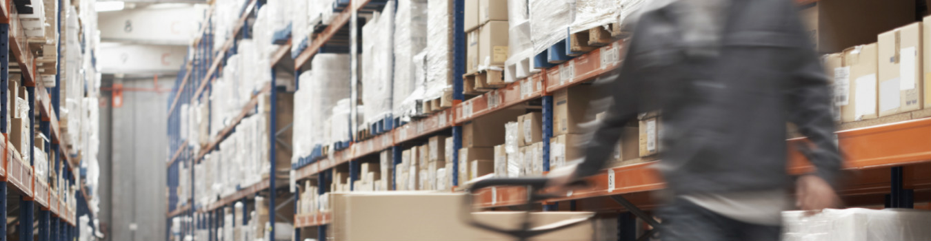 Advisory support in ocean freight procurement