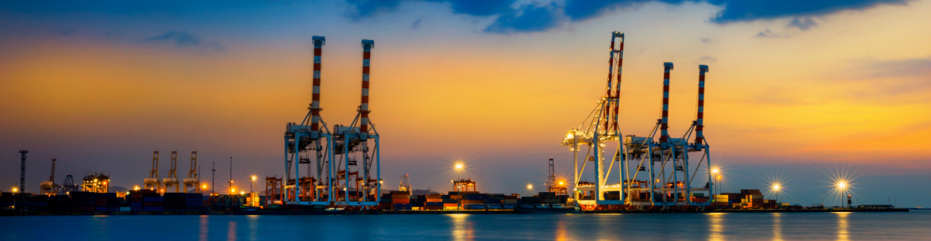 Advisory services in the ports sector