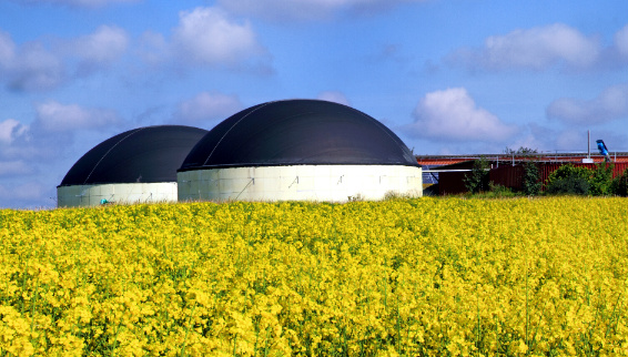 Impact assessment of anti-dumping duties on the global biodiesel market