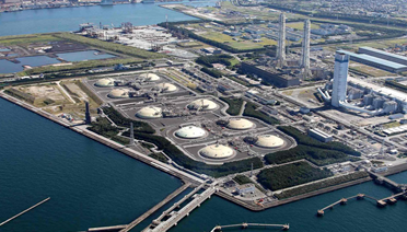 LPG and LNG terminal feasibility study