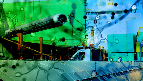 Multipurpose vessel charter rates surpass 2008 peak with further to go
